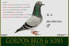 WO IHU15N01901 AJ Gordon Bros