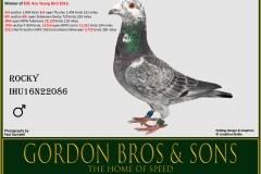 WO Rocky IHU16N22086 Gordon Bros
