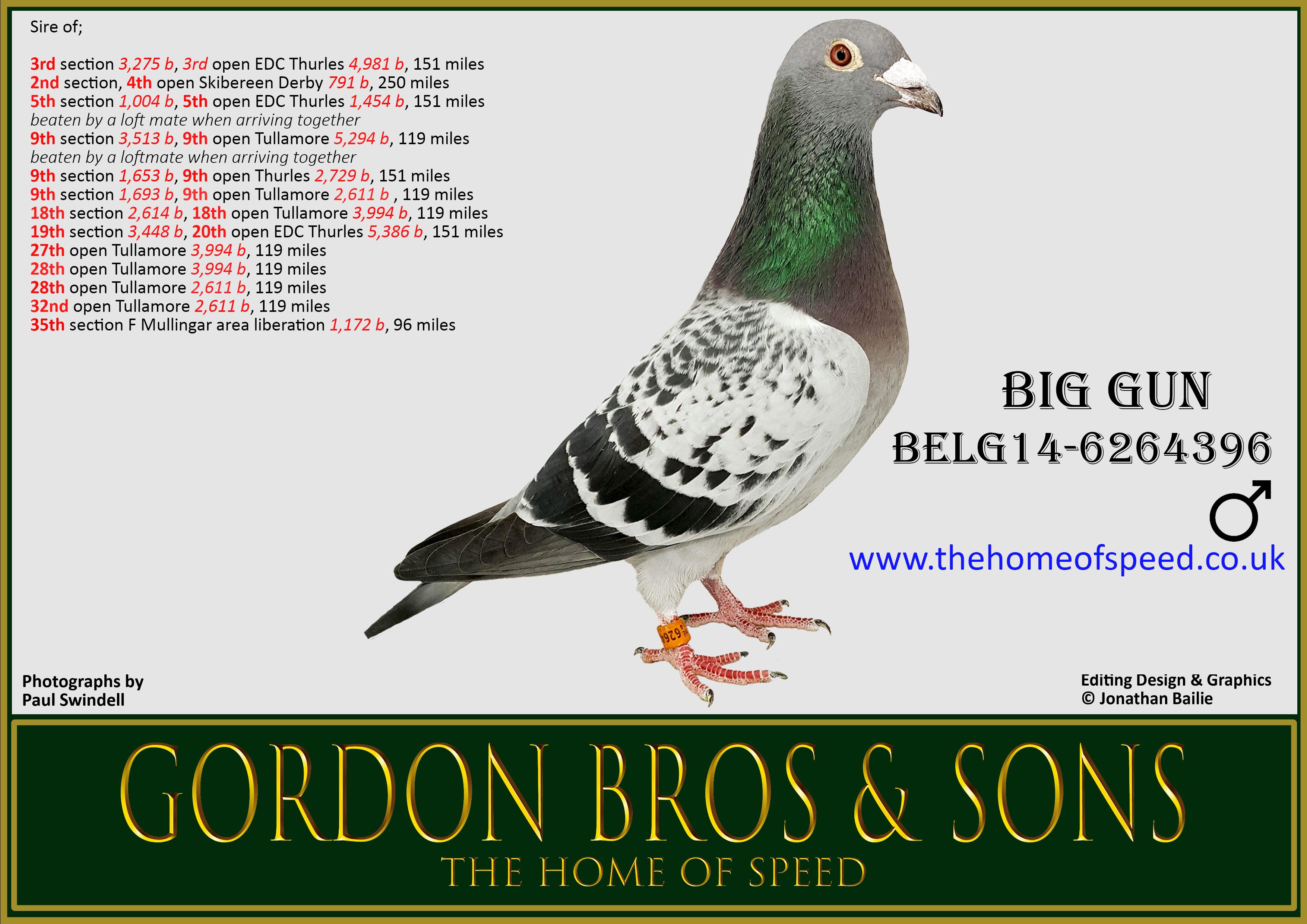 BIG GUN BELG14-6264396