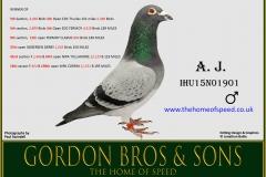 A.J. IHU15N01901