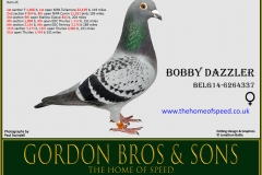 Bobby Dazzler Belg14 6264337
