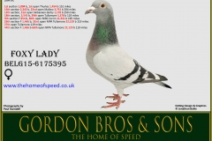 Foxy Lady BELG15-6175395