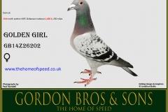 GOLDEN GIRL GB14Z26202